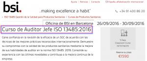 bsi-auditor_jefe-134852016